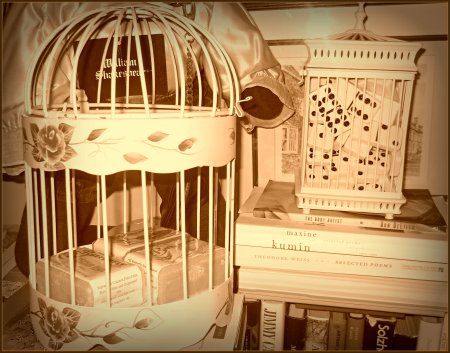 Bird cages sepia